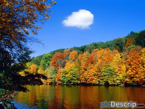 picDescrip.com - Nature - Beautiful! I love the fall!