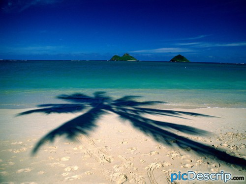 picDescrip.com - Travel - Spring Break! Anyone going anywhere?