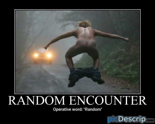 """picDescrip.com - WTF?! - first thing that comes up under google images when you type """"random"""" lol"""