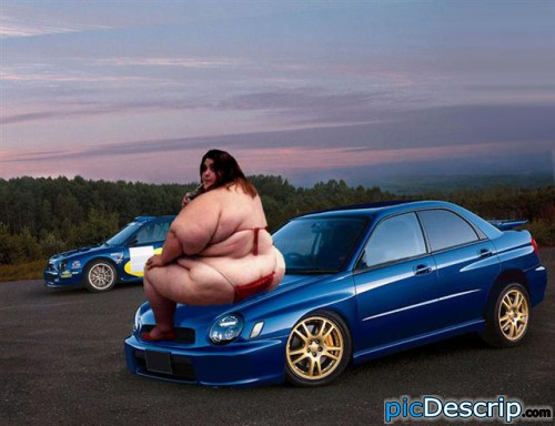 picDescrip.com - Photoshopped - poor subie...it did nothing to deserve this