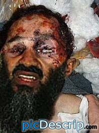 picDescrip.com - Politics - Holy leaked pictured!Osama is dead!!