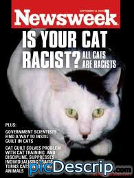 picDescrip.com - Animals - cat racism. its a serious problem.